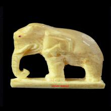 ช้าง วัดโพธิสัมพันธ์ หลวงปู่ทิม วัดละหารไร่ ร่วมปลุกเสก 2