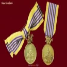 ๒- เหรียญในหลวง ชุดที่ระลึกประดับแพรแถบเฉลิมพระเกียรติ