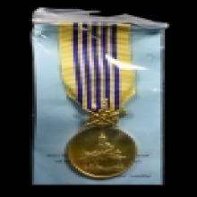 เหรียญแพรแถบพิธีกาญจนาภิเษกพ.ศ.2539เนื้อทองคำ