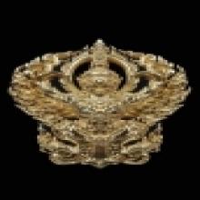 ครุฑ ชุดพิเศษ ส.เสือ นวะ#๒ รศ.ดร. สุวัฒน์ แสนขัติยรัตน์