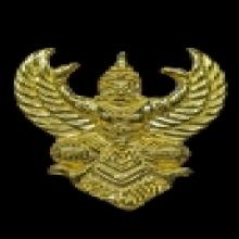 พญาครุฑ รุ่นโคตรรวย ทองคำ