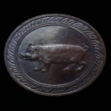 เหรียญนักษัตรหลักเมืองรุ่นแรก ปีกุน