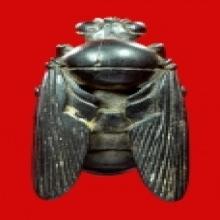 >>>แมลงภู่ไม้แกะมหาเสน่ห์ ตัวใหญ่จ่าฝูง ศิลป์ชั้นครู