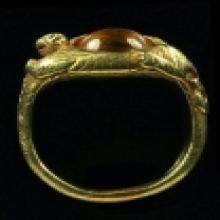 แหวนนคร เนื้อทองคำเสือนคร