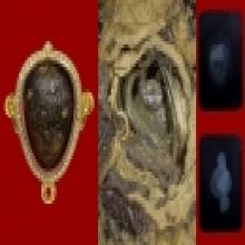 หนึ่งเดียวในโลก ปิดตาหลวงปู่เอี่ยม องค์เหนือหอยมหามงคล