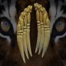 เสือสมิง หลวงพ่อคง วัดวังสรรพรส