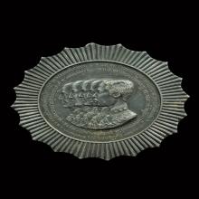 เหรียญสตพรรษมาลา 100ปีกรุงรัตนโกสินทร์ เนื้อเงิน