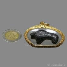 วัวธนู หลวงพ่อน้อย วัดศีรษะทอง