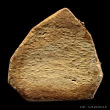 พระ13พิมพ์แรกแช่น้ำมนต์ปี2468 ล.ป.โต๊ะ วัดประดู่ กลีบบัวใหญ่