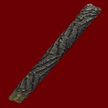 ตะกรุดหลวงปู่ศุข วัดปากคลองมะขามเฒ่า เนื้อทองแดง
