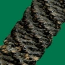 หลวงปู่ศุข วัดปากคลองมะขามเฒ่า ชัยนาท ขนาด 1.6 นิ้ว