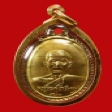 เหรียญหลังเต่า เจ้าคุณนร วัดเทพศิรินทร์ ปี 10กะหลั่ยทอง   เด